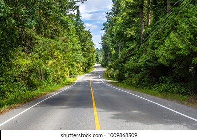 Deserted Winding Road Lined with Towering Trees on a Sunny Summer Day. Vancouver Island, BC, Canada