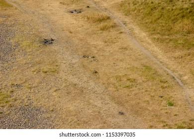 desertification in germany