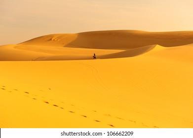 Deserts and Sand Dunes Landscape at Sunrise