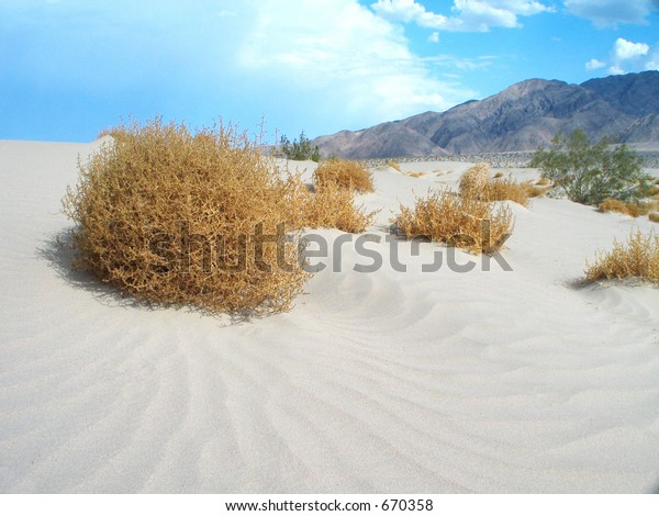 deserts tumbleweeds set against a blue sky and mountain background