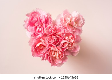 Design concept - top view of bunch of beautiful carnation with heart shape on pink background with copy space for mothers day, wedding and valentines day with copy space for mock up