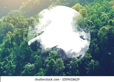 design concept white circle in center of density tree forest background pattern in vintage effect photography