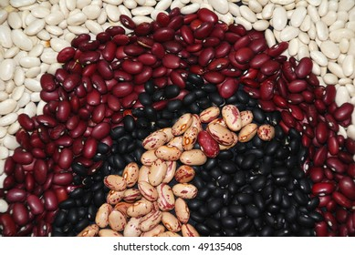 Design of dried beans