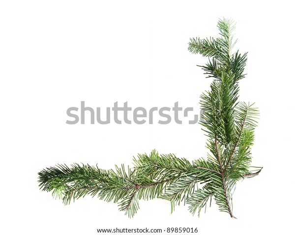 Design element.  Corner of spruce branches