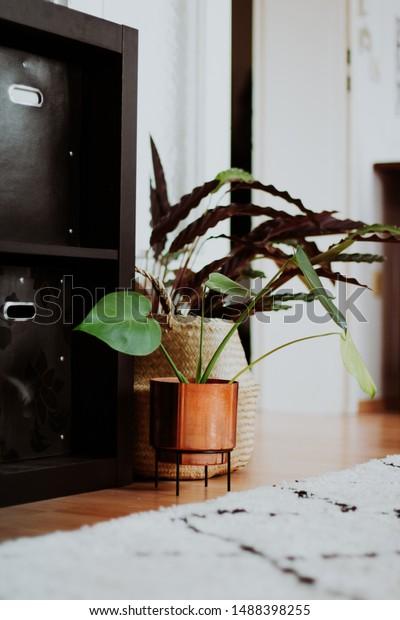 design modern close up shot of bohemian chic living room interior