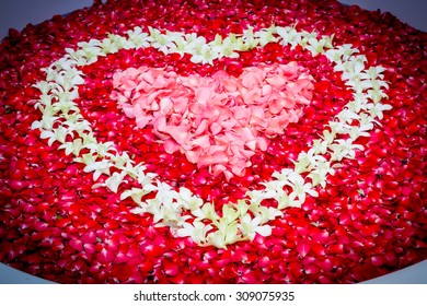 Design rose petals and leelawadee with heart shape decoration in bathtub.