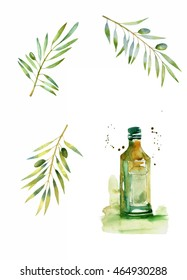 design set with olive branches and bottle of olive oil in splattered watercolor style