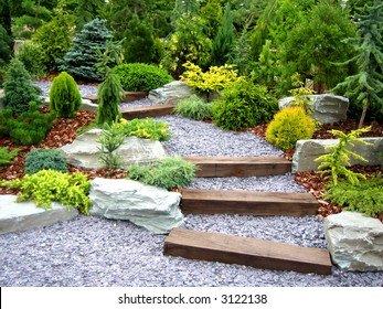 Designer garden with fresh plants and stones