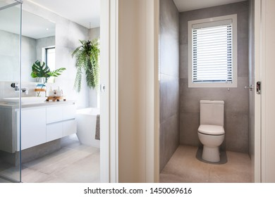 Designer washroom with all-white fittings and planters for a fresh look.