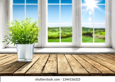 Desk of free space with green plant and white wooden window with spring view