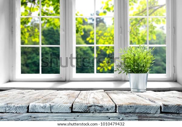 Стол свободного пространства с зеленым растением и окном весеннего времени