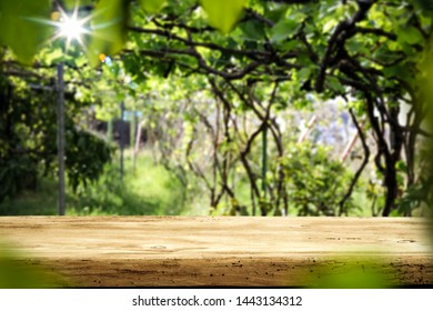 Desk of free space and summer garden background