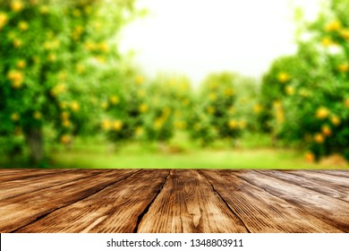 Desk of free space for your decoration and spring blurred background
