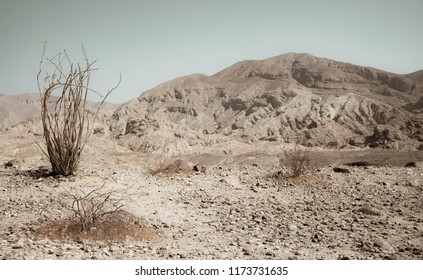 Desolate Barren California Desert Landscape