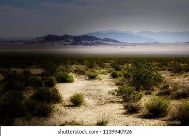 A desolate desert landscape with moody lighting