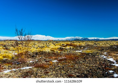 Desolate icelandic nature in the north of Thingellir national park, iceland april 2018