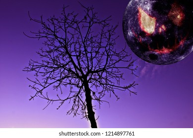 Desolated place in Halloween day, with big Moon come out from edge as pumpkin face and a bare tree, all in a horror scene, in violet background.