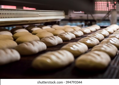 Dessert bread baking in  oven. Production oven at the bakery. Baking  bread. Manufacture of bread.
