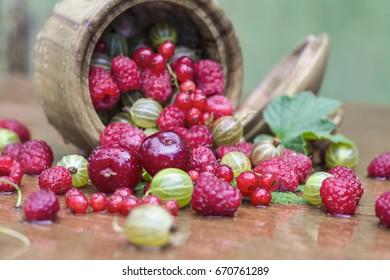 Dessert. Fresh juicy berries in a wooden cup.