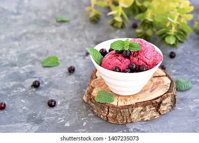 Dessert, frozen yogurt or black currant ice cream in a white bowl on a dark gray background. Decorated with berries of black currant and fresh mint. Summer desserts concept. Copy space.