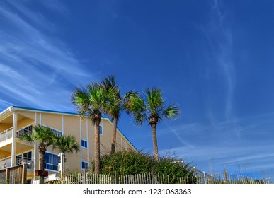 Destin Beach Florida Modern Architecture Rental Homes and Palm Trees