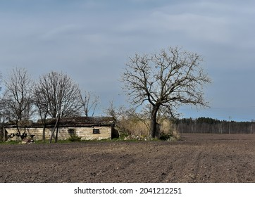 Destroyed building, field, tree and sky in the countryside.