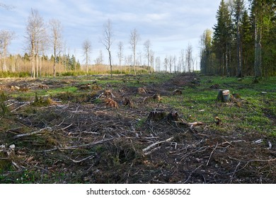 destroyed landscape images stock photos vectors shutterstock