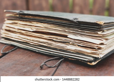 destroyed sheets of an old herbarium