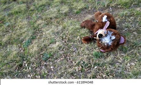 Destroyed Teddy Bear on Grass