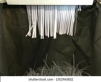 Destroying documents with Document shredder. Strips of destroyed paper form shredder in black bag.