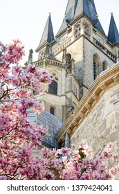 Detail of the Aachen Catholic Cathedral in spring near magnolia flowers. Cathedral of Aix-la-Chapelle is one of the oldest church in Europe. Carolingian and Gothic style near delicate flowers. Germany