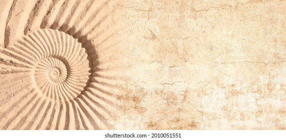 Detail of an ancient carved stone ornament with ammonite shell. Horizontal or vertical banner with stone wall texture and shell. Mock up template. Copy space for text