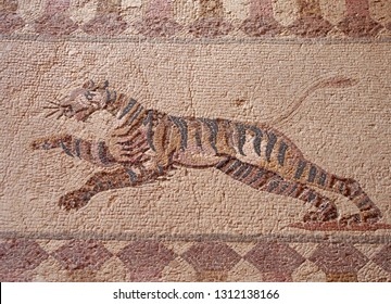 detail of an ancient roman floor mosaic with the image of a hunting tiger from the archeological ruins known as the house of dionysus at paphos cyprus