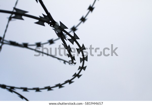 Detail of barbed wire.