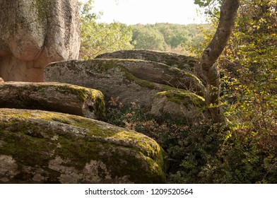 Detail of Beglik Tash - a prehistoric rock sanctuary situated on the Black Sea coast of Bulgaria, near town of Primorsko.