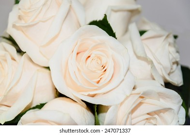 Detail of a bride bouquet made with roses
