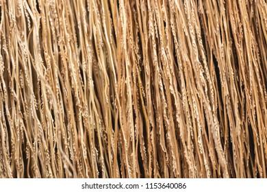 Detail of broom