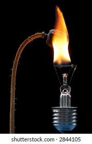 Detail of the burning poppyhead and burn out bulb.