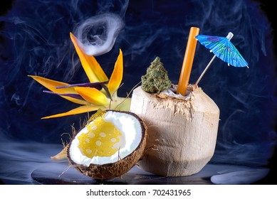 Detail of cannabis bud and shatter with fresh coconut and tropical flower isolated - infused marijuana oil concept