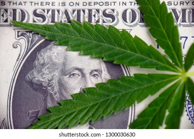 Detail of cannabis leaf over american dollar bill - medical marijuana stock market concept