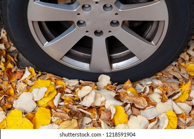 Detail of a car tyre with autumn leaves