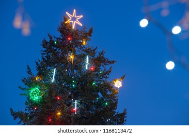 Detail of Christmas tree on the blue sky