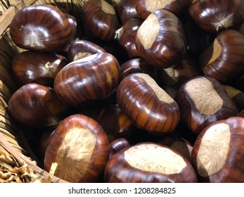 Detail Collection of ripe chestnuts close up. Raw chestnuts harvested in the autumn. Sweet fresh chestnut. Sativa chestnuts seen from above. Food background Turin Italy October 2018