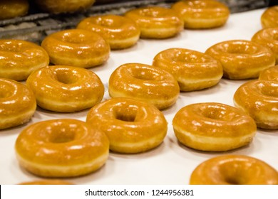 Detail of a doughnut production business with freshly baked donuts coming out of the oven.