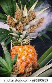 Detail of dried cannabis buds (Green Crack strain) with pineapple plant and fruit - medical marijuana concept background
