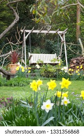 Detail of an English garden in spring with daffodils and a swing bench
