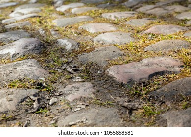 Detail of the famous cobbelstone road located in the Forest of Arenberg in North of France. On such roads every year is organized the one day cycling race Paris-Roubaix. Focus soft and selective.