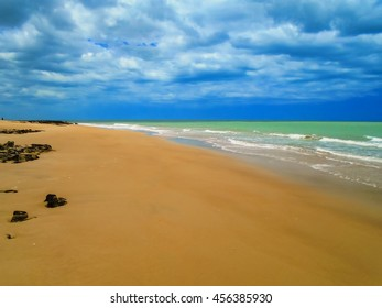 Detail from the Galinhos beach in Brazil