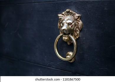 Detail of a golden lion door knoker on a navy blue door. vintage