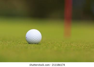 detail of a golf ball ready to putt